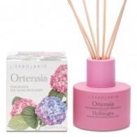 Miris za prostor s drvenim štapićima Ortensia